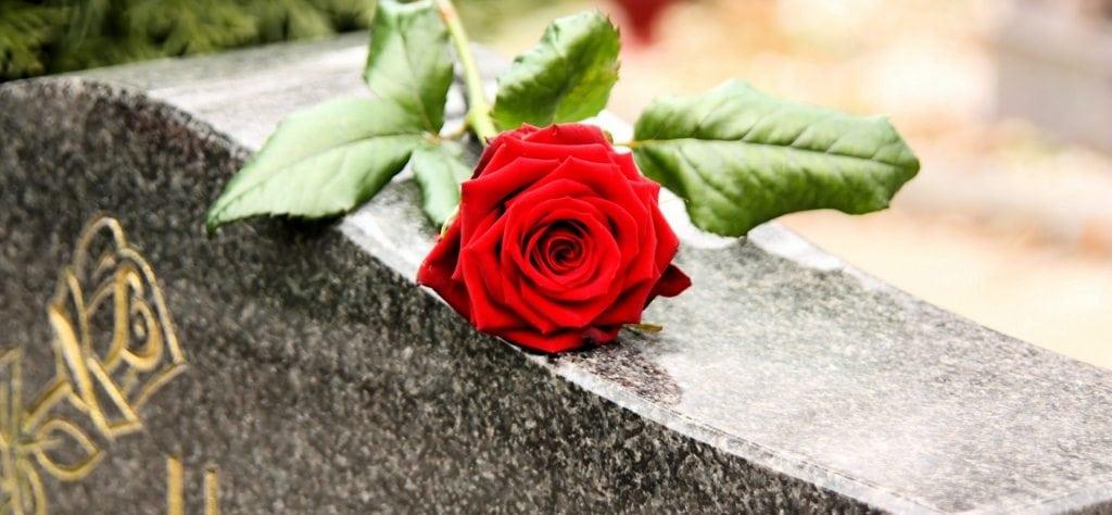 Ros på gravsten