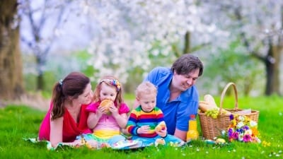 Familjehem, kontaktperson eller kontaktfamilj