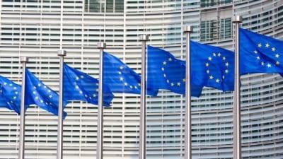 EU-flaggor vid parlamentet.