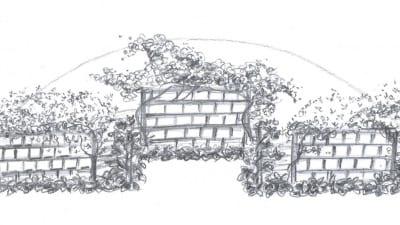 Alternativ 2: Spaljéer med klättrande växter
