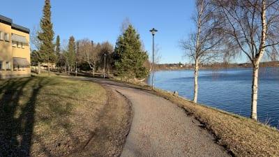 Skönvik 2020