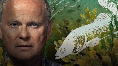 Närbild på en mans ansikte. Han tittar rakt in i kameran. bredvid hans ansikte, en tecknad bild föreställande en ål.